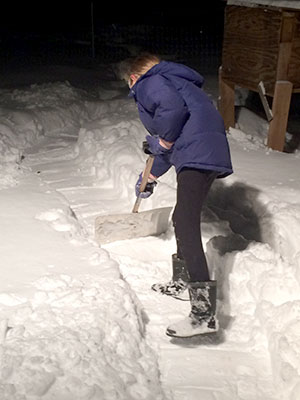 Clara Belle helps shovel paths to the animals